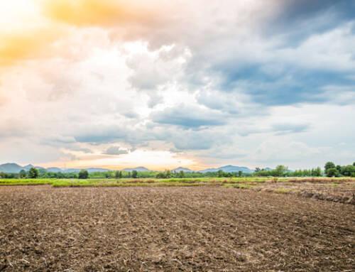 Setembro terá chuvas bem abaixo da média, adverte o Agroclima. Safra deverá atrasar